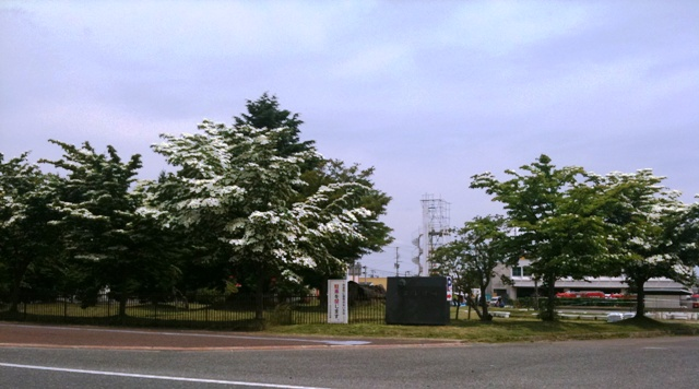 米沢市役所の前