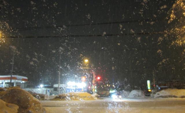 すごい雪だ
