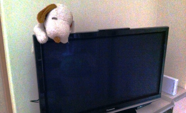 娘のところのテレビ