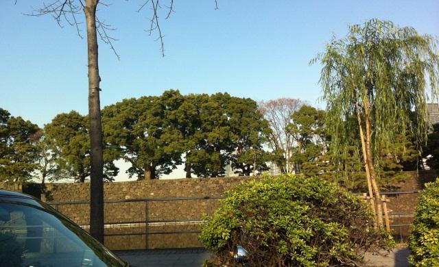 皇居の石垣1