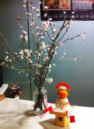 支援センターの啓翁桜