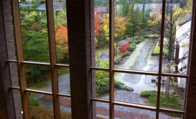 窓からみた紅葉